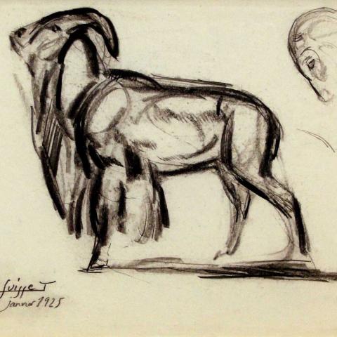 Mouflon. 1925.